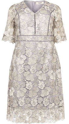 Studio 8 Ellis Lace Dress