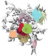 Pottery Barn Bouquet of Flowers Framed Print by Zlatka Paneva