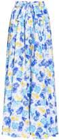 Alexander Terekhov Printed Maxi Skirt