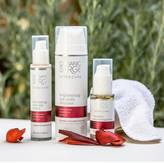 Organic Surge Cleanse Restore And Moisturise Skincare Bundle