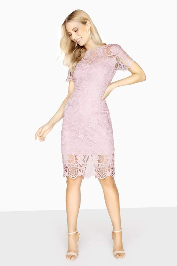 a2c1a07d Knee Length Fitted Lace Dress - ShopStyle UK