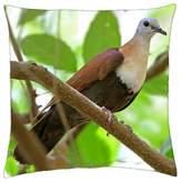 "iRocket - Wetar Ground Dove - Throw Pillow Cover (16"" x 16"", 40cm x 40cm)"
