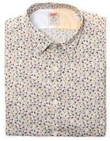 BOB Strollers Men's Multicolor Cotton Shirt.