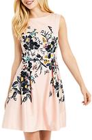 Oasis Rosie Anne Skater Dress, Multi