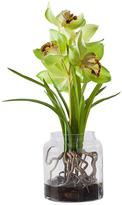 Torre & Tagus Orchid Vidro Potted Arrangement