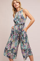 Plenty by Tracy Reese Selena Floral Jumpsuit