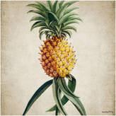 Fly London Vanilla Botanical Pineapple Print - 50x50cm
