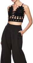 Honey Punch Embroidered Crop Top