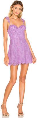 NBD x Naven Ashley Dress