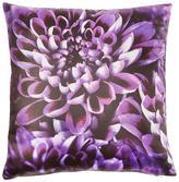 Laurence Llewellyn Bowen Chrysanthemum Cushion