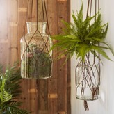 Graham and Green Hanging Glass Vases