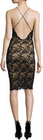 Nightcap Clothing Drive Me Home Lace Cocktail Dress, Black