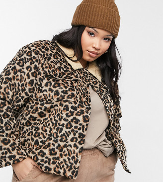 Wednesday's Girl Curve trucker jacket with borg collar in leopard print