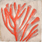 One Kings Lane Sea Coral Reef Wall Art