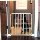 Carlson Pet Expandable Dog Gate
