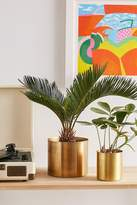 """Urban Outfitters Mod Metal 6"""" Planter"""