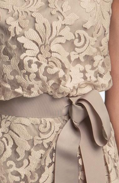 Tadashi Shoji Lace Overlay Ribbon Dress
