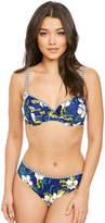 Panache Elle Balconette Bikini Top