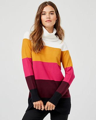 Le Château Stripe Knit Turtleneck Sweater