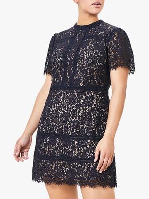 Oasis Curve Lace Shift Mini Dress, Navy
