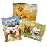 GARTNER STUDIOS Gartner Greetings Pet Humor Greeting Cards, 3 pack, Thinking of You