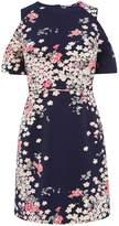 Oasis Kimono Frill Sleeve Dress
