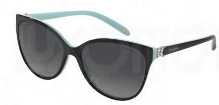 Tiffany & Co. And Co. Women's TF4089B-8055T3-58 Butterfly Sunglasses