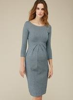 Isabella Oliver Effra Pleat Maternity Dress