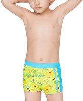Aivtalk Boys Swim Trunks Animal Dinosaurs Pattern Swimming Underwear Pants 5-6 Years