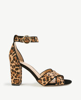Ann Taylor Alice Leopard Print Haircalf Block Heel Sandals