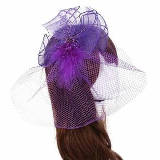 Skang Casual Decorative Wedding Veil Feather mesh Gauze Headband hat Female Bride