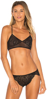 Only Hearts Bardot Retro Bralette in Black. - size L (also in S)