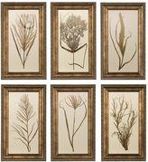 Uttermost 6-pc. Wheat Grass Framed Wall Art Set