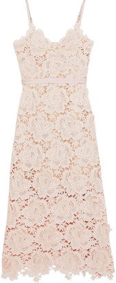 Catherine Deane Frida Floral-appliqued Guipure Lace Midi Dress