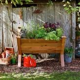 Williams-Sonoma Gronomics Eco Wedge Garden Bed