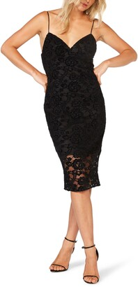 Bardot Marella Lace Cocktail Dress