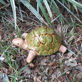 Bosmere Ceramic Garden Tortoise