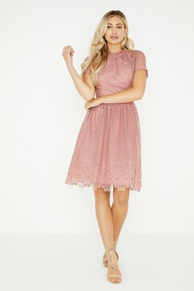 Little Mistress Gaby Apricot Lace Skater Dress