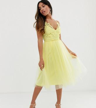 Asos DESIGN Petite Premium lace top tulle cami midi dress-Yellow