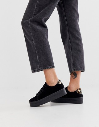 Park Lane flatform lace up trainer in black with leopard tab