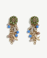 Ann Taylor Garden Earrings