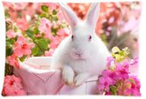 Rabbit Pillow Case Fashionable White Rabbit With Pink Flower Pattern Print Pillow Cover inches (One Side )