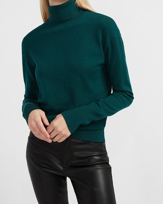 Express Skimming Turtleneck Sweater