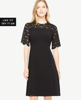 Ann Taylor Circle Lace Yoke Flare Dress