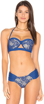 Luli Fama Wanted and Wild Underwire Top