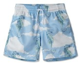 Stella Cove Toddler Boy's Seahorse Swim Trunks