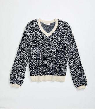 LOFT Animal Print V-Neck Sweater