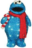 Sesame Street Cookie Monster 18-in. Pre-Lit Outdoor Decor