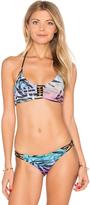 Pilyq Braided Zen Bikini Top