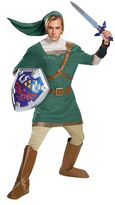 Teen Legend of Zelda Link Prestige Costume